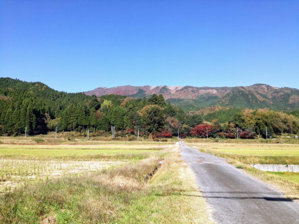 智頭町の景色